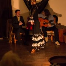 Flamenco-9940