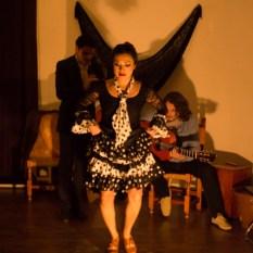 Flamenco-9963
