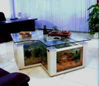www.4FishTank.com - coffee table aquariums - New York
