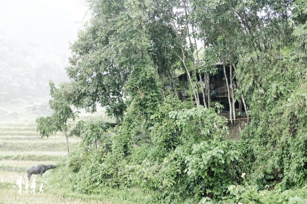thai-apache-guesthouse (119) copie