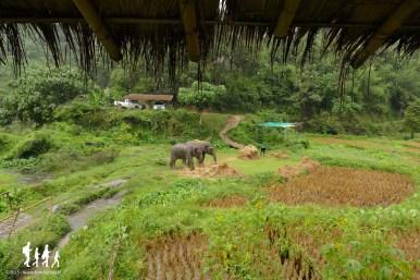thai-apache-guesthouse (26) copie