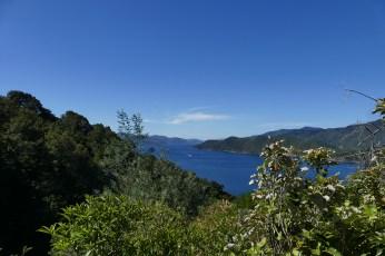 nouvelle-zelande-roadtrip-havelock-kaikoura (3)