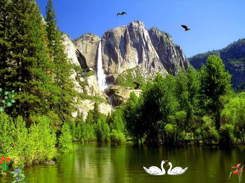 Fall Mountain Scenes Wallpaper Eagles Kingdom Free Nature Screensaver