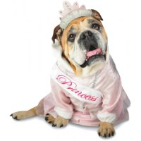 Princess Zelda Dog Costume Cute Pet Costume