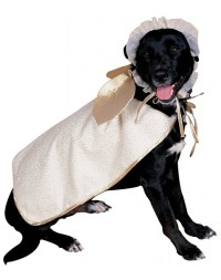 Angel Dog Holiday Pet Costume