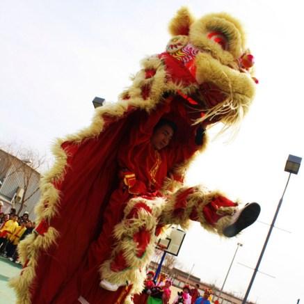 lion dancers--square