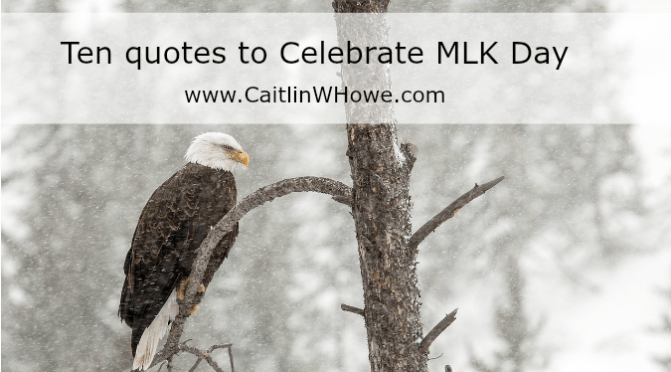 Ten quotes to Celebrate MLK Day