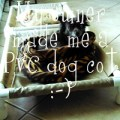 PVC dog cots - The DIY Girl