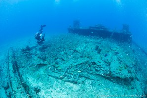 scuba diver, wreck, and fish in Florida