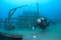 Allison searches the wreck for nudibranchs