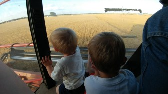 Boys watching the wheat
