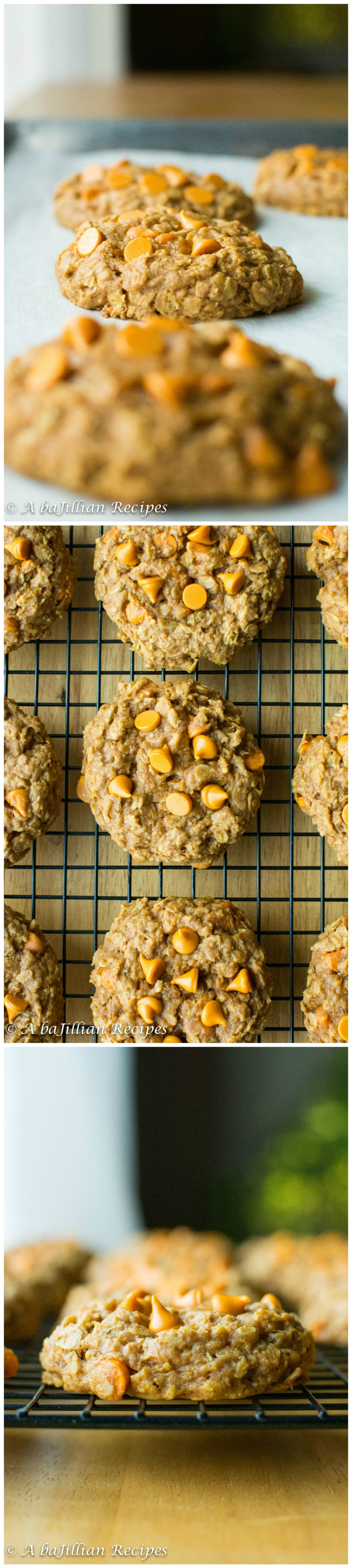 Pumpkin Oatmeal Cookies4