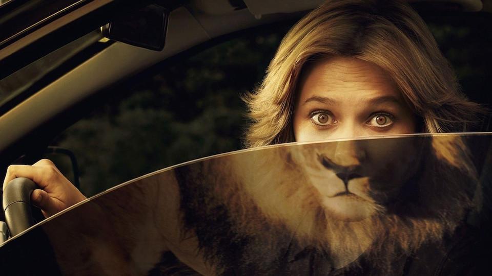 Female Lion, by  picturefordesktop.com