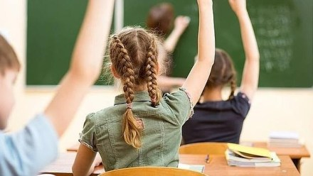 No culpe a los genes de las malas notas