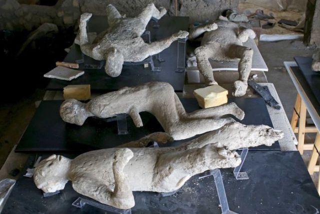 Plaster cast moulds of victims of the Mount Vesuvius eruption lie on a display table in a laboratory at Pompeii.