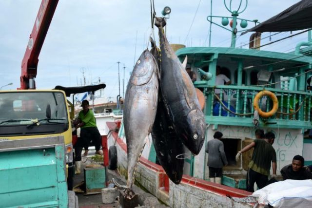 Tuna fish hanging on a hook, waiting to be loaded onto a truck in Denpasar.