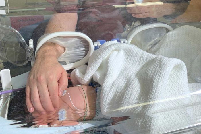 In hospital, a doctor in a red uniform places his right hand through an incubator to touch a tiny baby with wires.