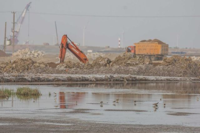 Construction and wetland