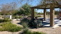 4 Desert Friendly Landscaping Ideas  ABC Scapes Inc