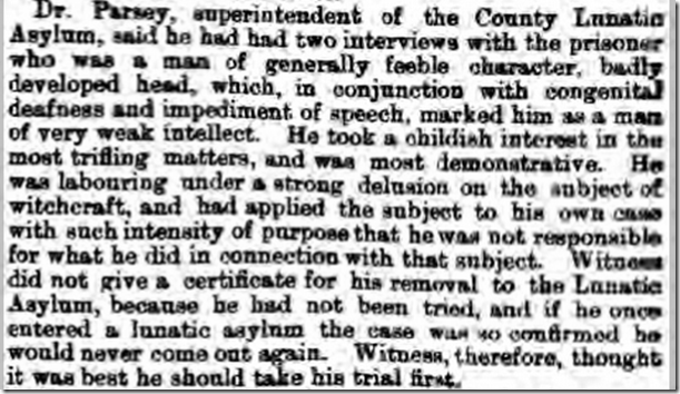 Worcestershire_Journal_18_December_1875_2