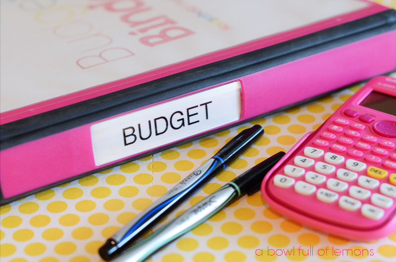 Budget Binder Series A Bowl Full of Lemons