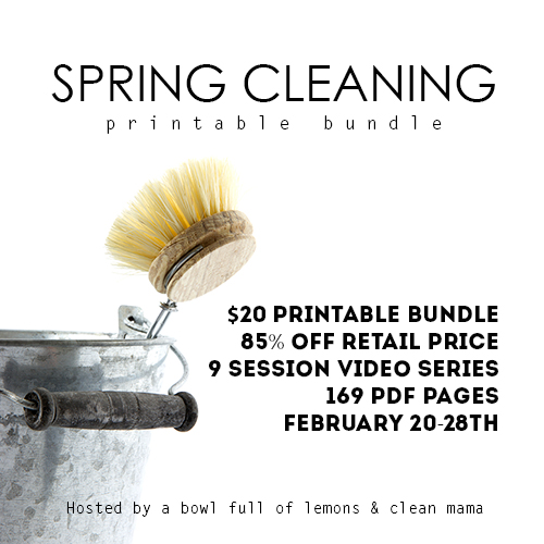 Spring Cleaning Bundle