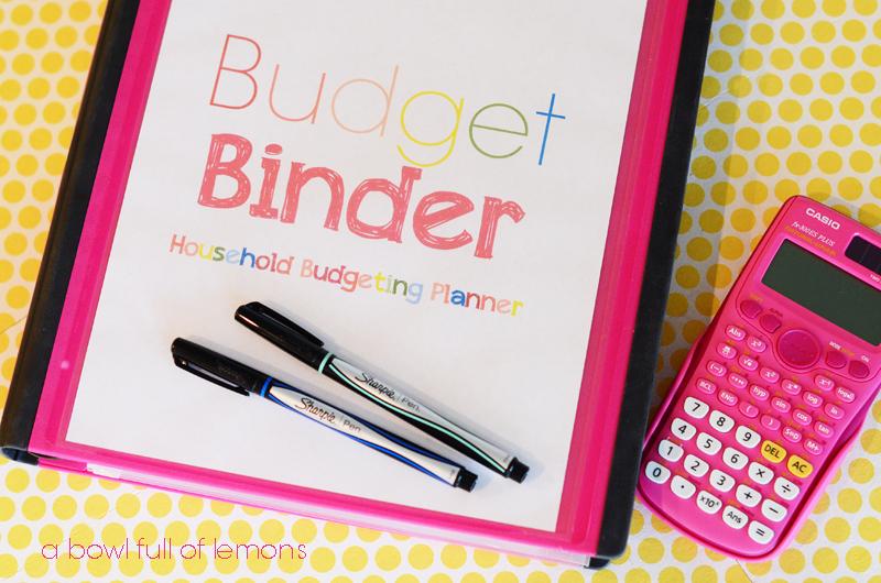budget organizer book - Kenicandlecomfortzone