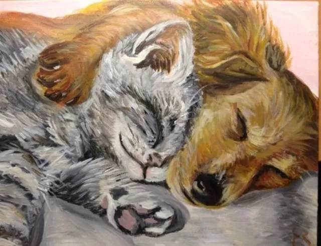 Cute Cats And Kittens Wallpaper Hd Cat Themes Claire Slattery Artwork Nap Time Original Painting