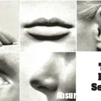 100 curiosità sul corpo umano che non tutti sanno - I 5 Sensi