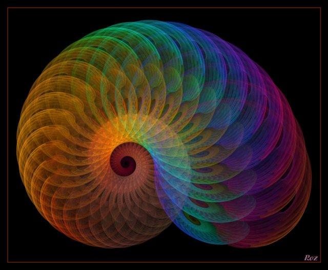 Amonitus-Spiralicus-rainbows fractal