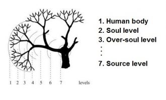 the-multidimensional-self-1-human-body-soul-source-level-330x198