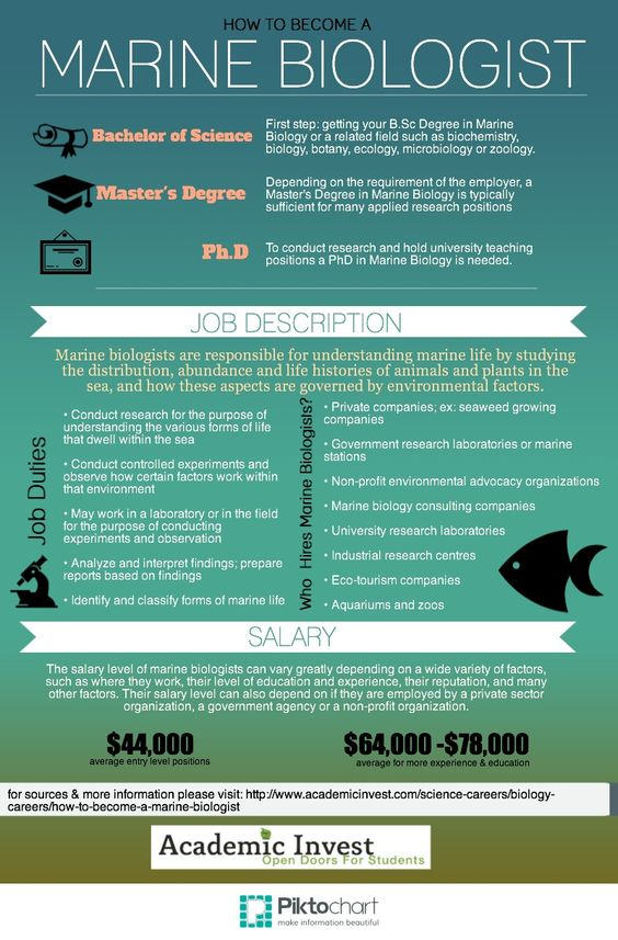 How to Become a Marine Biologist Academic Invest