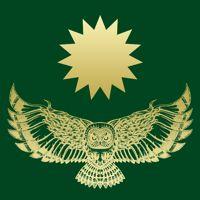 Rune image - owl & star