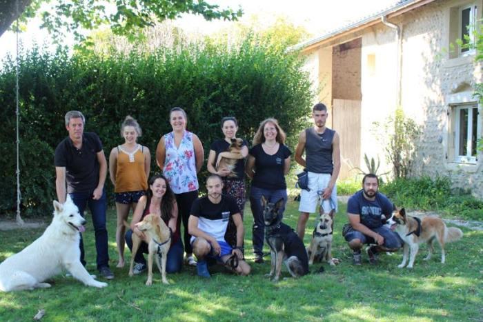 formation chiens assistance diabétiques acadia semaine 2 groupe