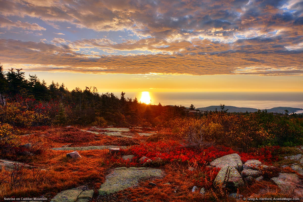 Fall Leaves Desktop Wallpaper Backgrounds Autumn Sunrise On Cadillac Mountain In Acadia
