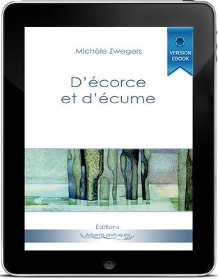 cover_pocket_ebook
