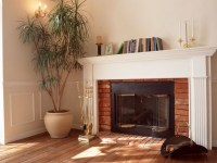 Charmglow Gas Fireplace Parts | Home Design Ideas