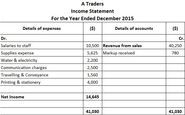 Income Statement Format Examples Types - business profit and loss statement form