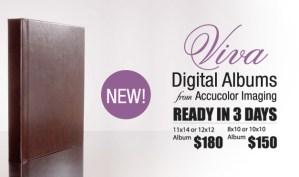 Viva Digital Flush Mount Albums
