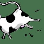 01_vaca
