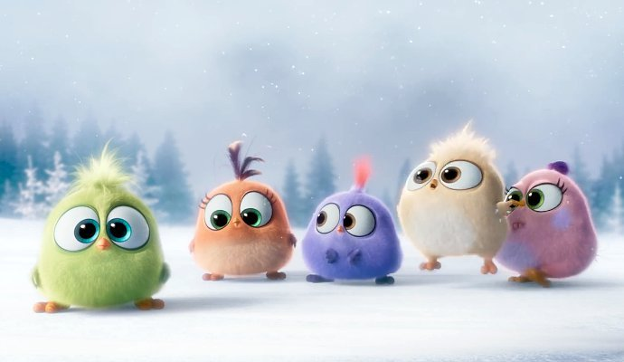 Cute Angry Bird Wallpaper See Some Cute Hatchlings In Angry Birds New Video