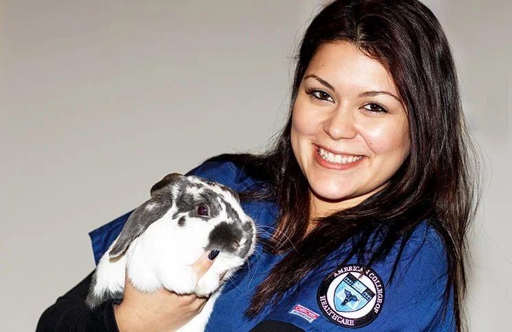 veterinary technician programs