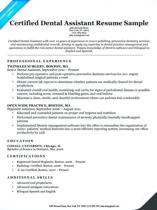 resume summary examples for budtender