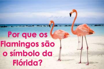 Porque os flamingos são o simbolo da Florida?