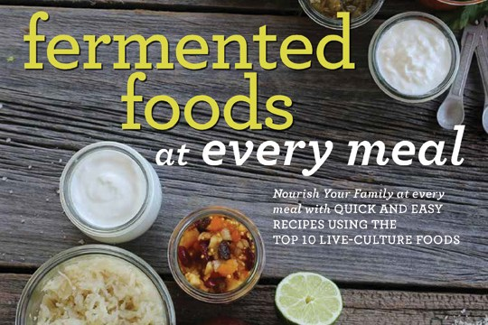 Fermented foods at every meal : a book review