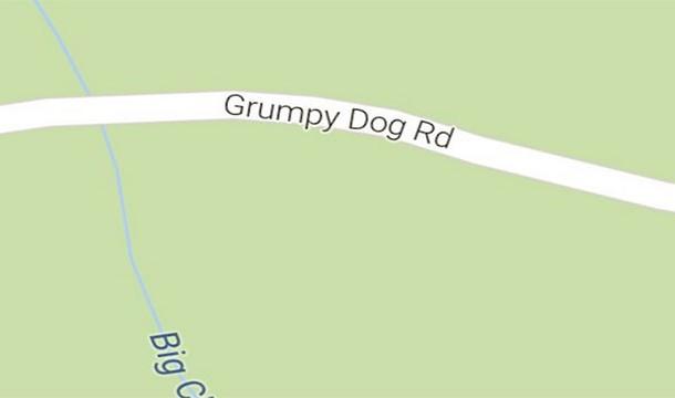 Estrada do Cão