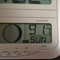 Temperatures in Alameda climbed to over 90F through the weekend. (Action Alameda News)