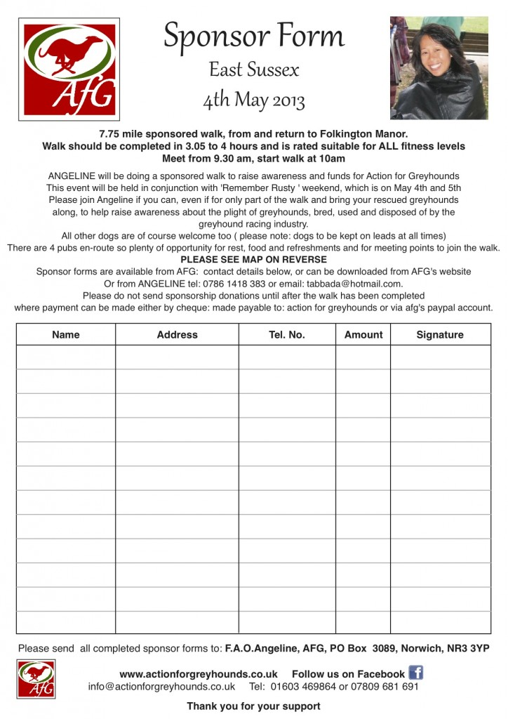 Charity Sponsorship Form Template charity sponsorship form template - Blank Sponsorship Forms