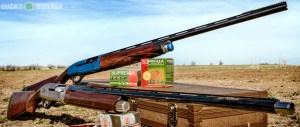 shotguns-featured-2