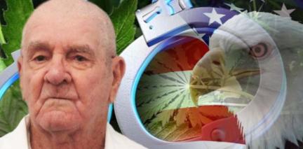 vet_sentenced_for_cannabis